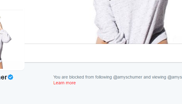 How To Get Blocked By Celebrities 101